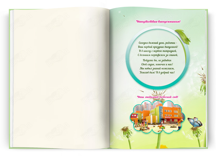 Книга Одуванчики